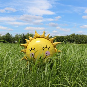 yellow toy sunshine with smiley face in green grass