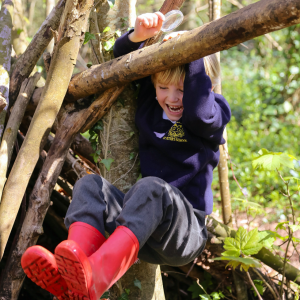 A St Peter's Prep school pupil playing in a tree